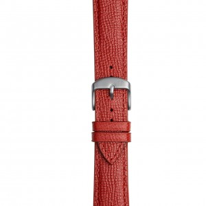 Coloured Leather Strap